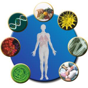 Afbeelding bij uitleg over biophotonica